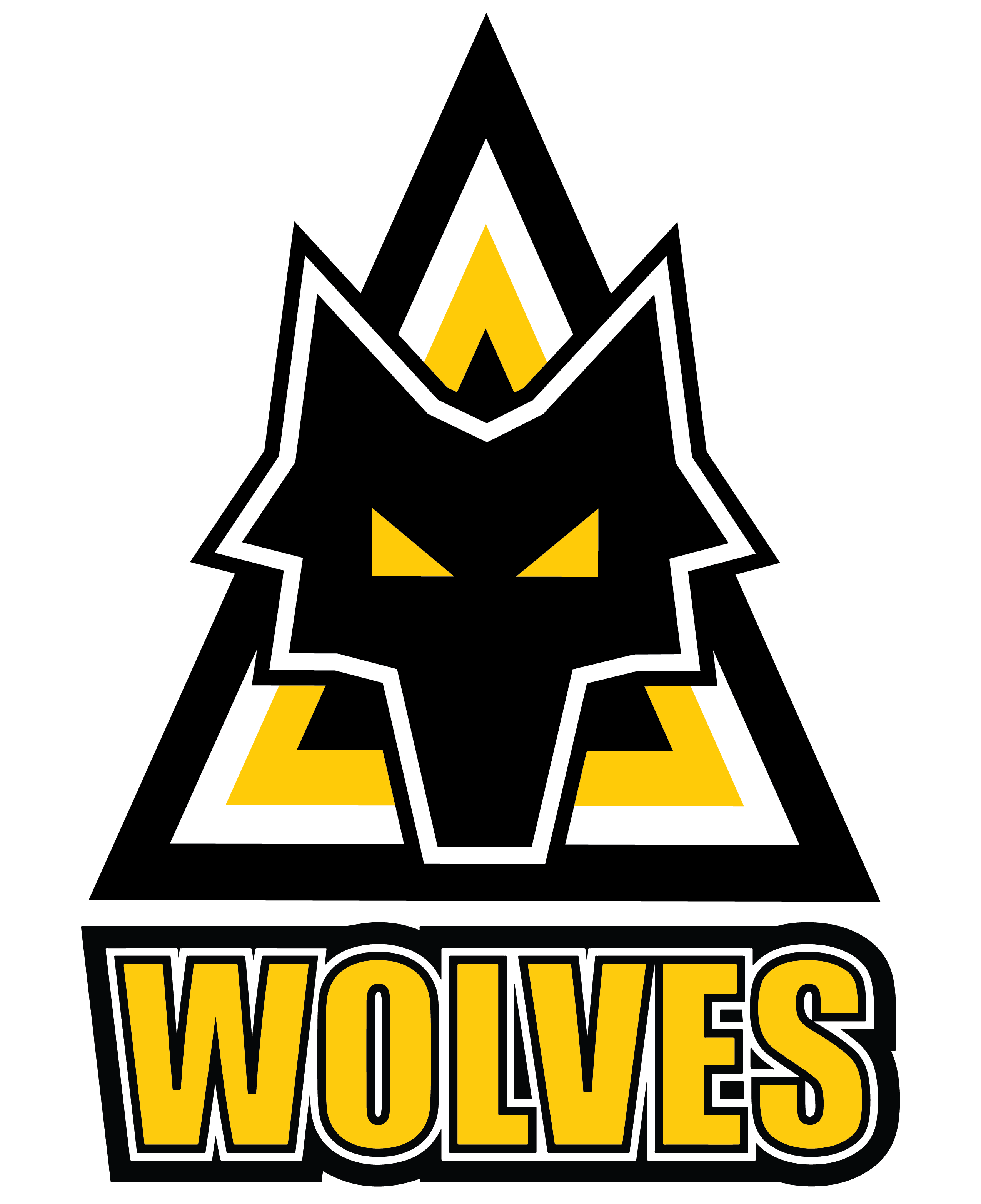 Arkansas Wolves FC
